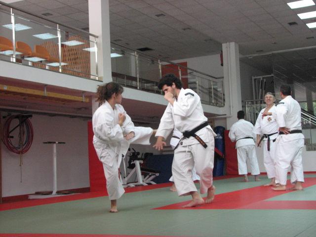 Kenshis almerienses durante la práctica.