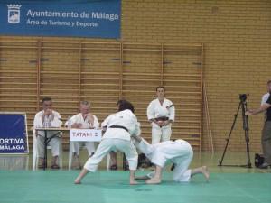 Alvaro y Jose Luis en plena acción durante su participación