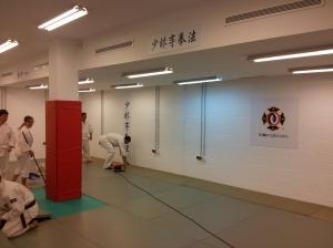 Terminando de fijar las láminas y de recolocar el tatami
